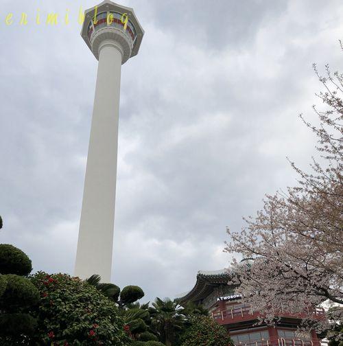 下から見上げた釜山タワー
