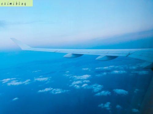飛んでいる飛行機内から見える海